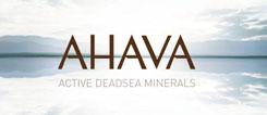 AHAVAlogoresized
