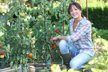 Start your own veggie garden