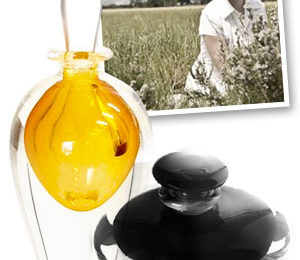 The scent of sustainable fragrances