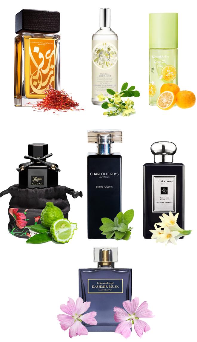Interesting-scents-gucci-elizabeth-arden-jo-malone-aramis