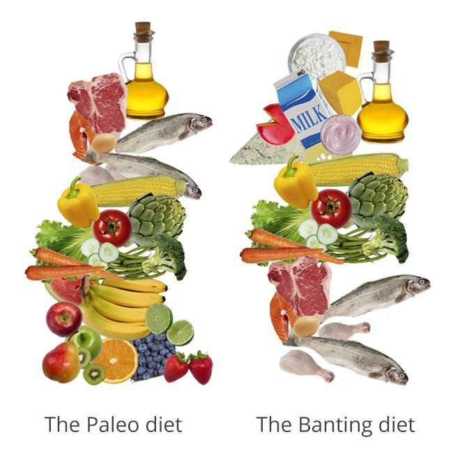Paleo_vs_Banting