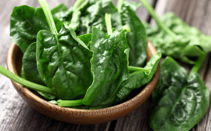 Is chlorophyll the answer to a healthy body?