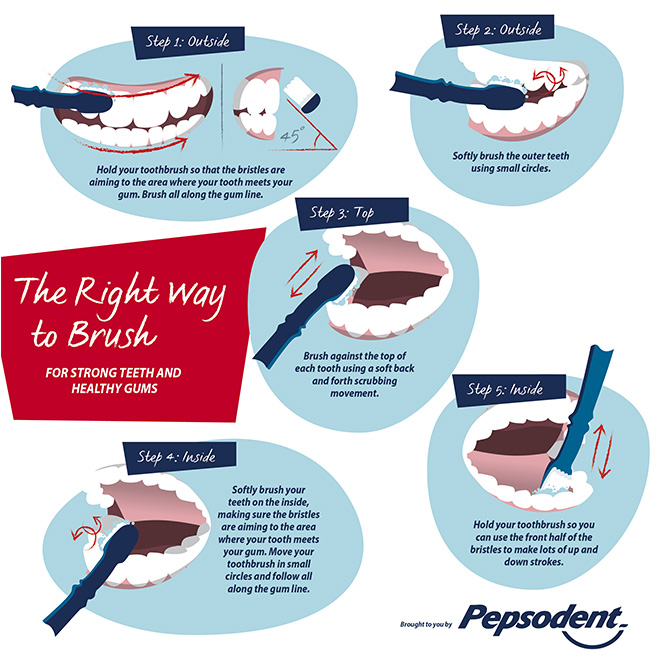 pepsodent-how-to-brush-your-teeth-correctly