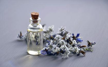 Fragrance Q&A