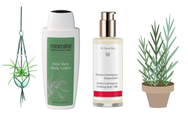 These are the body products we'll be using this spring 4